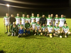 Hurling vs Kill Sept 23rd 2014