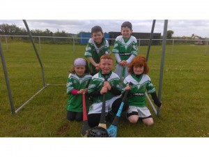 Under 8 May vs Ardclough